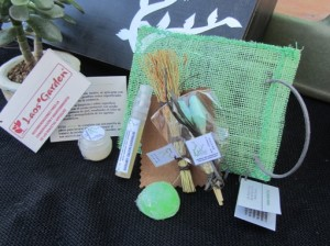 muestras de productos de limpieza de macetas de bonsai